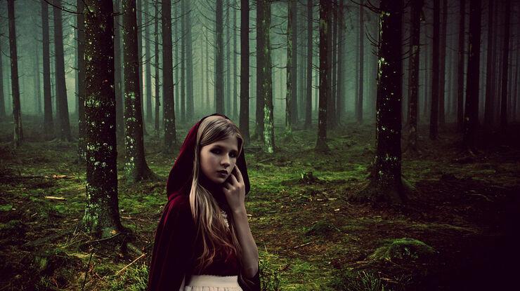 Rødhætte i skoven