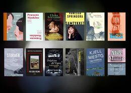 Årets bedste oversatte bøger 2020